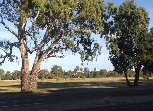 Adelaide skyline from Fullarton Rd, Dulwich.