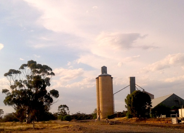 Grain silos at Lascelles, Victoria. Photo Erle Levey