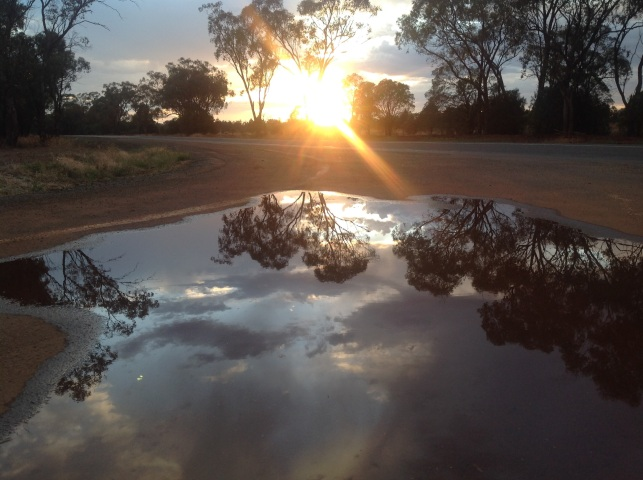 Morning reflections after the storm, Nyngan, NSW. Photo: Erle Levey