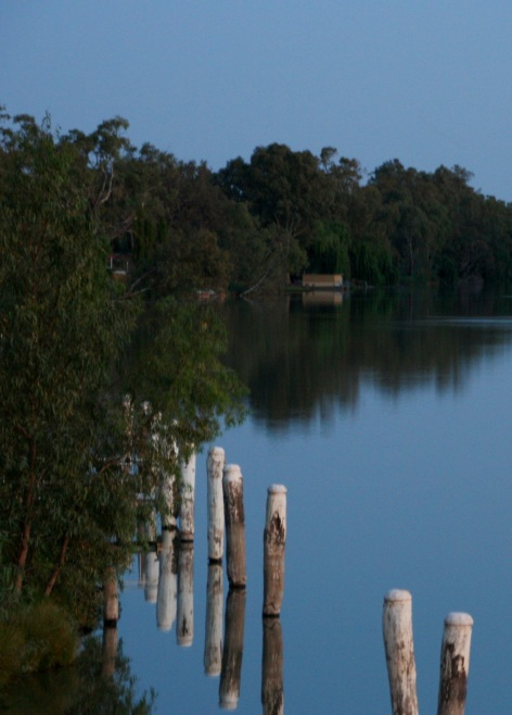 Moonlight on the Darling River, Wentworth, NSW. Photo: Erle Levey