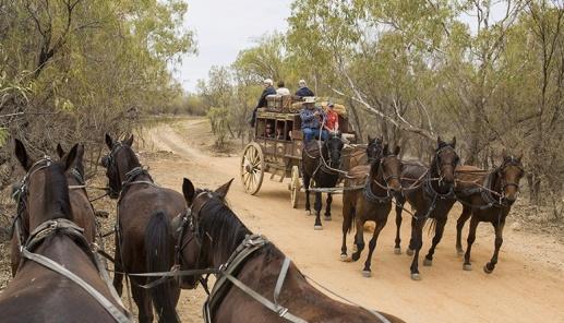 kinnonandco-stagecoach-turnaround