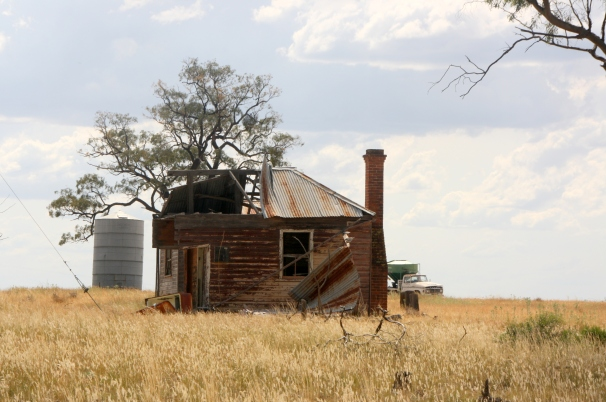 Biddon, north of Gilgandra, NSW
