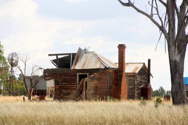 Biddon, north of Gilgandra, NSW Photo: Erle Levey