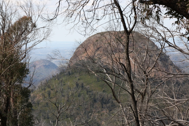 Warrumbungles05j