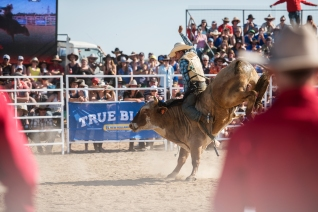 Deni Ute Muster 2015- The Art of Zowie Photography-247