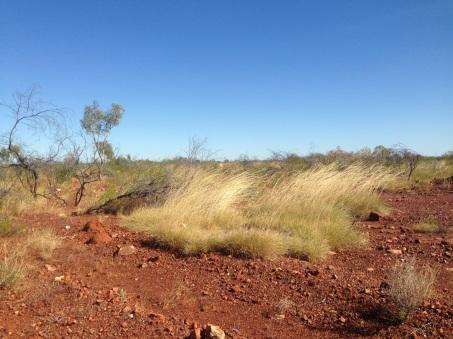 Along the Stuart Highway near Elliott, NT. Photo: Leavearly.com