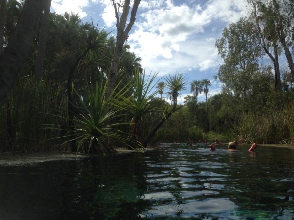 Mataranka hot springs2
