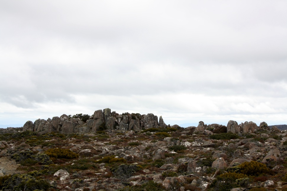 mt wellington_2328