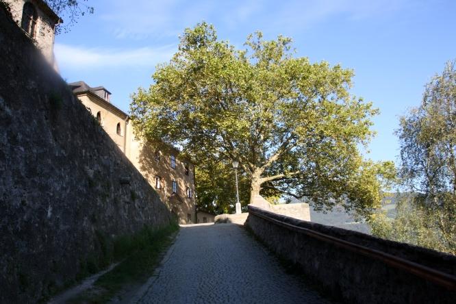 Salzburg7108