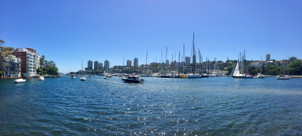 RUSHCUTTERS BAY_7381