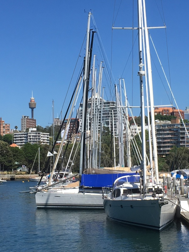 RUSHCUTTERS BAY_7384