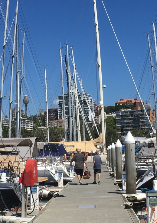 RUSHCUTTERS BAY_7400