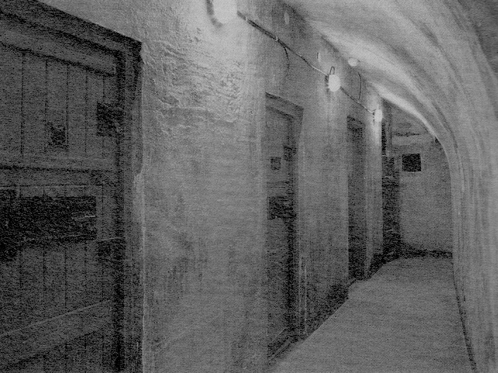 1956 cells