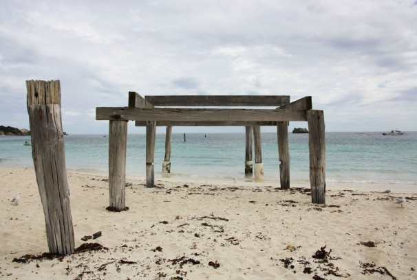 HAMELIN BAY_4113
