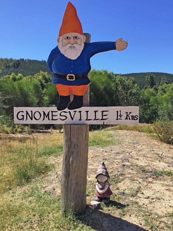 GNOMESVILLE_2343