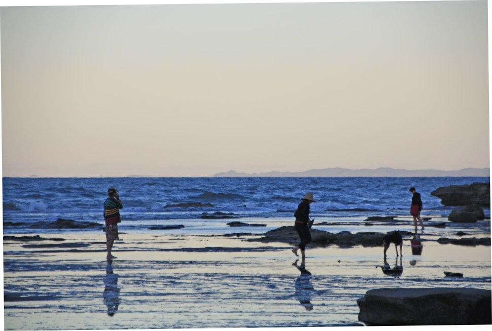 SHELLY BEACH_7877