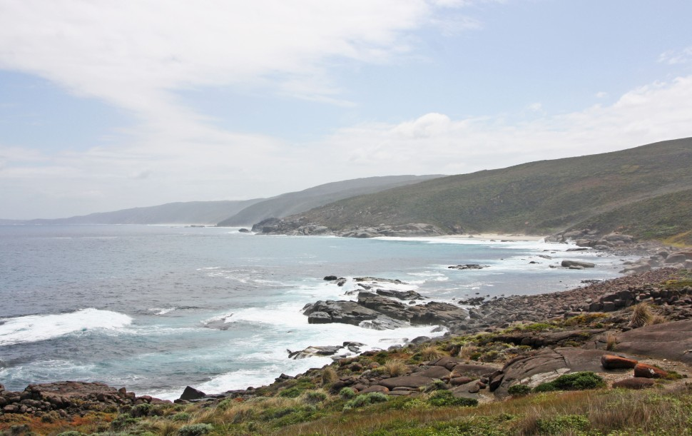 WEST CAPE HOWE_4164