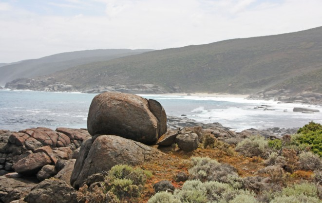 WEST CAPE HOWE_4175a