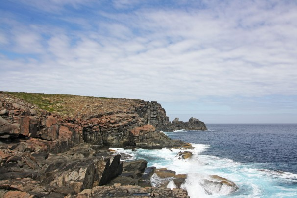 WEST CAPE HOWE_4180