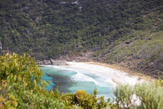 WEST CAPE HOWE_4189