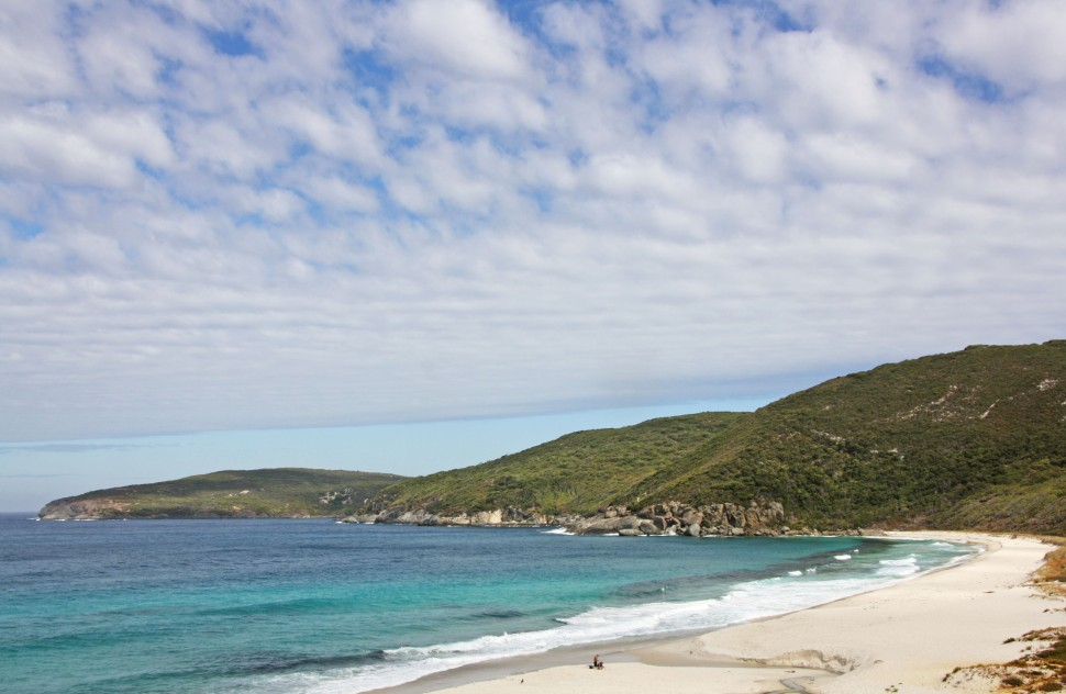 WEST CAPE HOWE_4192