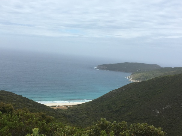 WEST CAPE HOWE_9205