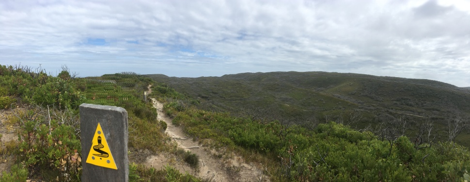WEST CAPE HOWE_9207