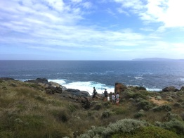 WEST CAPE HOWE_9222