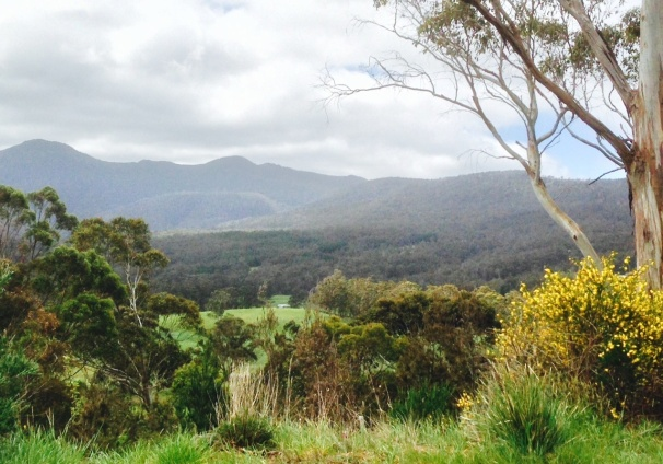 huon valley-132