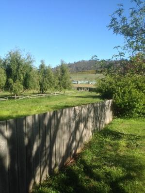 Tasmania_1263