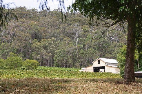 DONNELLY RIVER_4118